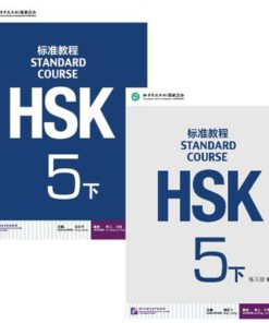 https://store.pandachinese.online/product/hsk-standard-course-5b-textbook/